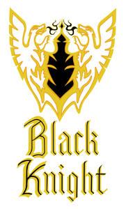 1978 Body Stripe Kit, Black Knight (El Camino) Gold