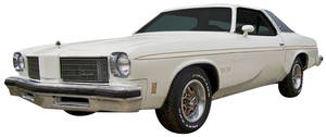 Cutlass Body Stripe Kit, 1975 Hurst/Olds