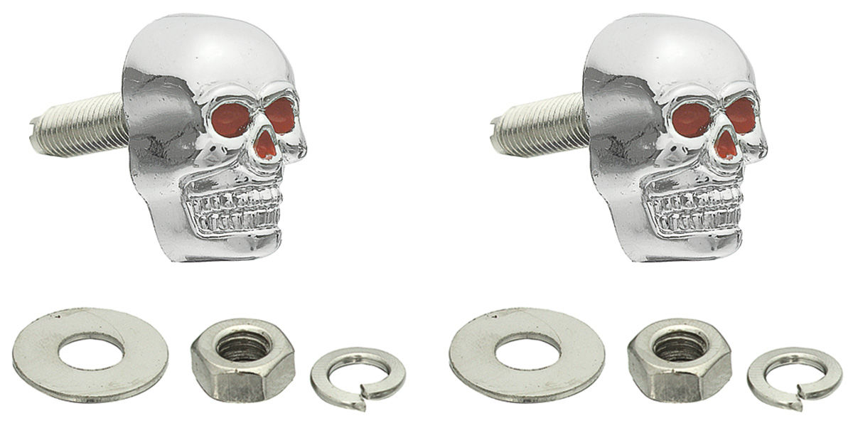 Photo of License Plate Fasteners skull